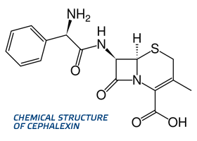 cephalexin chemical structure